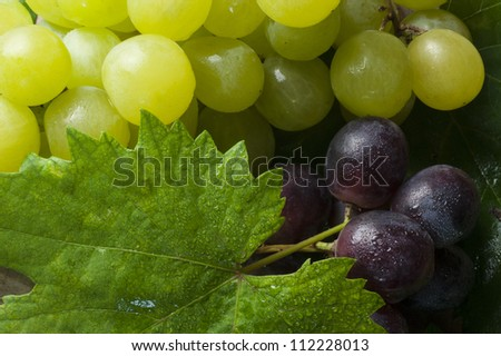 bunch of grapes on the wood