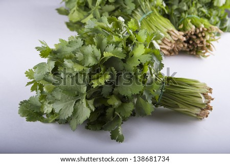 bunch of green coriander on a front and two bunches on background on a white table