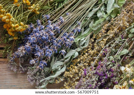 Bunch of healing herbs on wooden board. Herbal medicine. Top view, flat lay.