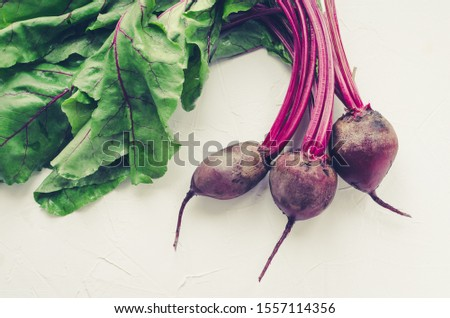 Bunch of homegrown organic young beets with green leaves on the table. Fresh harvested beetroots on white concrete background. Top view.