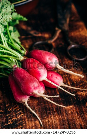 Bunch of homegrown red radish on cutting board