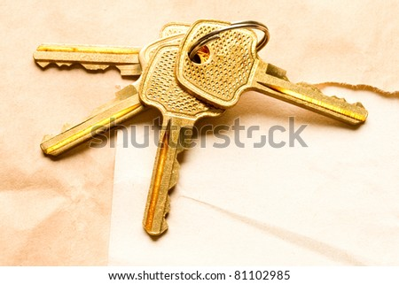 Bunch of keys on the paper background