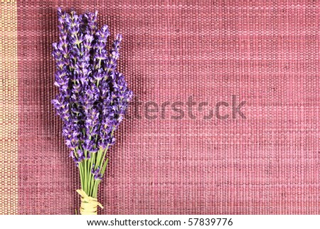 Bunch of lavender on natural  background - beauty treatment
