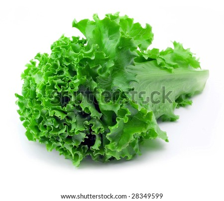 Bunch of lettuce on the white background (isolated).