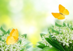 Bunch of Lilly of valley flowers over green with butterflies, spring scene background with copy space