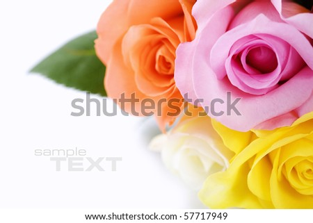 Bunch of multi-colored roses over white. Selective focus
