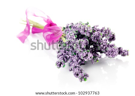 Bunch of of lavender on a white background