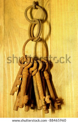 bunch of old rusty keys hanging on a wooden wall
