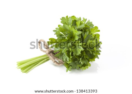 Bunch of parsley tied with a string, isolated