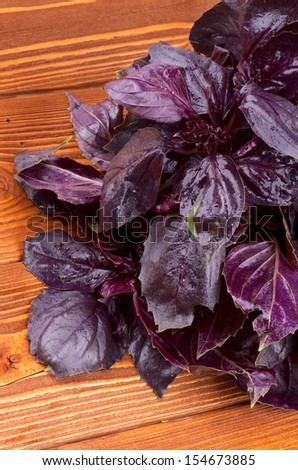 Bunch of Perfect Fresh Purple Basil Leaves closeup on Wooden Background