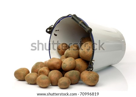 bunch of potatoes coming out of an old enamel bucket on a white background - stock photo