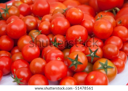 Bunch of red cherry tomatoes with one wrong yellow cherry tomato.ciliegino pachino