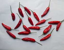 bunch of red chilli peppers white background