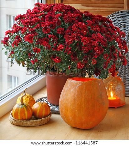 Bunch of red chrysanthemums and pumpkins with an orange lantern-candlestick.