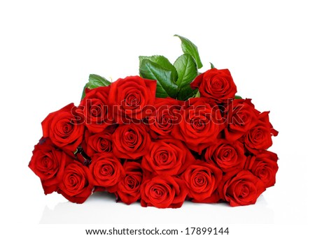 White Roses on the Red Background. Painting - White Roses on the Red stock photo : Bunch of red roses isolated on white background