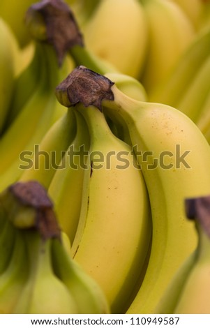 Bunch of ripe and juicy bananas. - stock photo