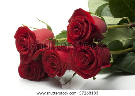 bunch of roses