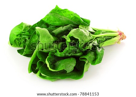 Bunch of spinach isolated on white background - stock photo