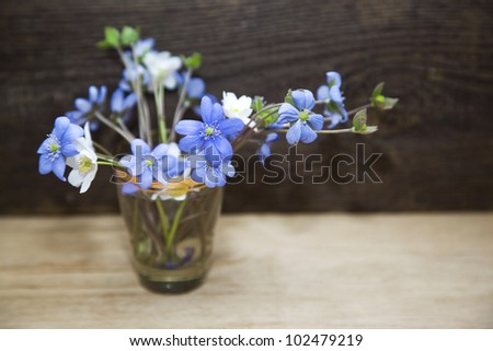 Bunch  of spring flowers. Snowdrop on the wooden background