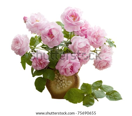 Bunch of tea roses in the vase isolated on white
