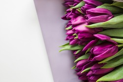 Bunch of tulip flowers on white background. Beautiful spring flowers, copy space. A gift to a woman's day from pink tulip flowers.