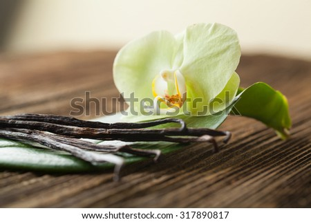 Bunch of vanilla sticks and flower #317890817