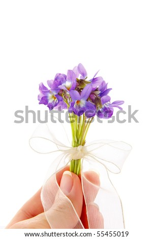 bunch of viola  flower isolated on white