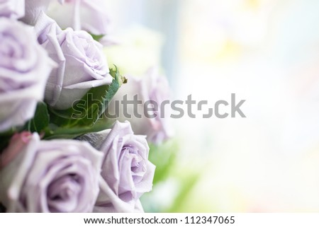 Bunch of violet and purple beautiful roses