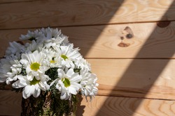 Bunch of white daisies in front of natural bark boards.