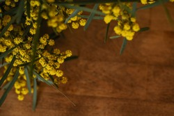 Bunch of yellow wattle blossom on wooden table with copy space