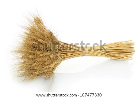 Bunch of yellow wheat ears on white background - stock photo