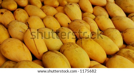 Bunch of yummy yellow mangoes! (more images in gallery)