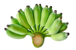 bunch unripe cultivated bananas isolated on a white background. It is a tropical fruit that provides the most energy.