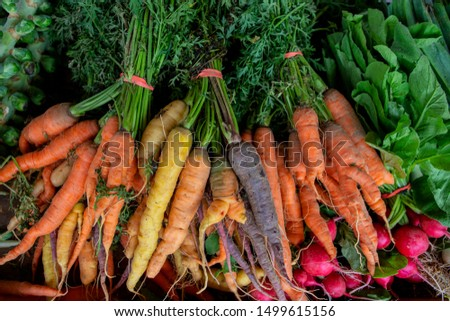 Bunches of carrots and radish bunch from farmer's market