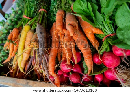 Bunches of colorful carrots and radish bunch from farmer's market