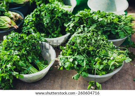 Bunches of coriander at a vegetable market