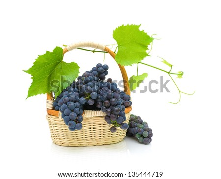 bunches of dark grapes in a basket on a white background. horizontal photo.