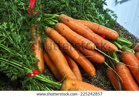 Bunches of fresh carrots at a farmer\'s market.