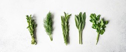 Bunches of fresh raw herbs - rosemary, thyme, dill, parsley and sage on a textured background. Top view. Copy space