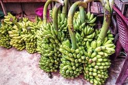 bunches of green bananas at the market