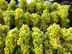 Bunches of green grapes in an openair market