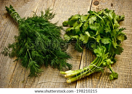 Bunches of green herbs on the wooden table