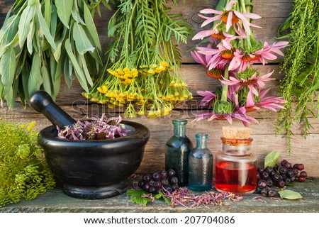 bunches of healing herbs on wall, herbal medicine