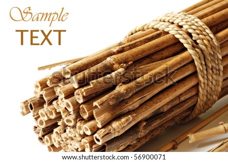 Bundle of bamboo stalks on white background with copy space.  Macro with shallow dof.