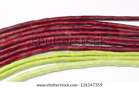 bundle of fresh long beans(Vigna unguiculata subsp. sesquipedalis) on a white background