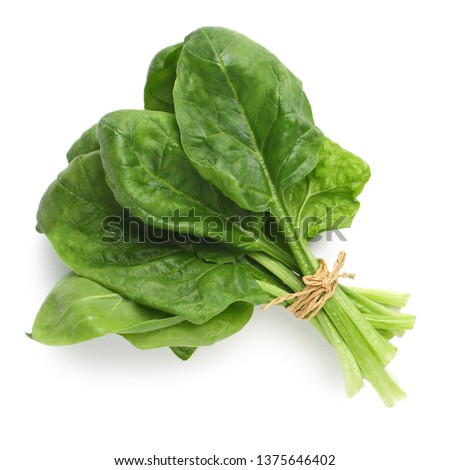 Bundle of fresh spinach isolated on white, top view