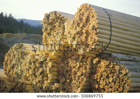 Bundled fence posts sitting in stacks at a lumber mill in Priest River, Idaho