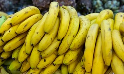 Bundles of ripe sweet bananas at farmers market