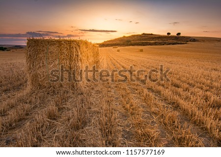 Bundles of straw in a dry field during the summer of Castilla in Spain Stock fotó ©
