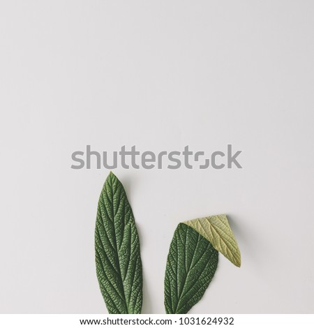 Stock Photo Bunny rabbit ears made of natural green leaves on bright background. Easter minimal concept. Flat lay.
